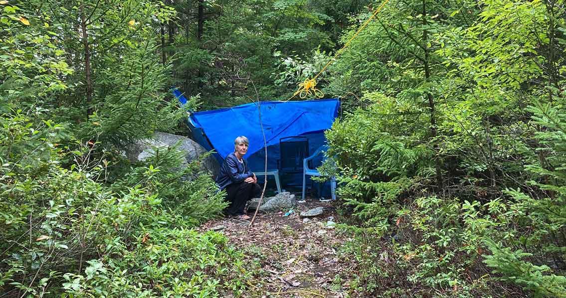 Clayton-Park-Shelter